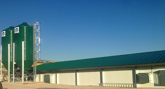 Construcción de Granjas Avícolas y Naves de Pollos