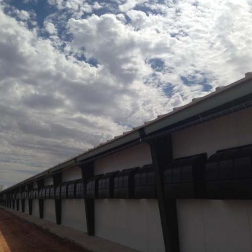 Equipamiento Granja Avícola en Quintanar del Rey (Cuenca)