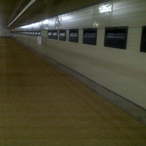 Reforma de Granja Avícola en Villamalea (Albacete)
