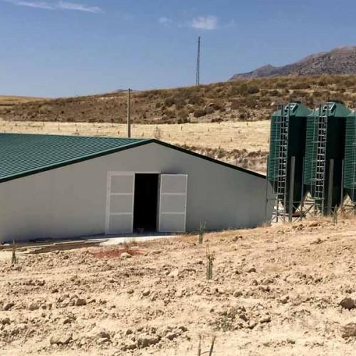 Nave Avícola Llave en Mano para Pollos de Engorde en Vélez Rubio (Almería)