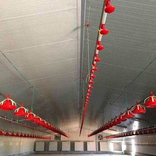 Nave Avícola Llave en Mano para Engorde de Pollos en Casasimarro (Cuenca)