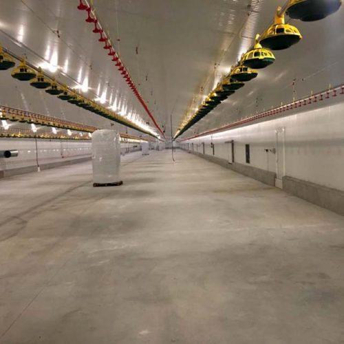 Granja Avícola Llave en Mano para Explotación de Pollos en Huéneja (Granada)