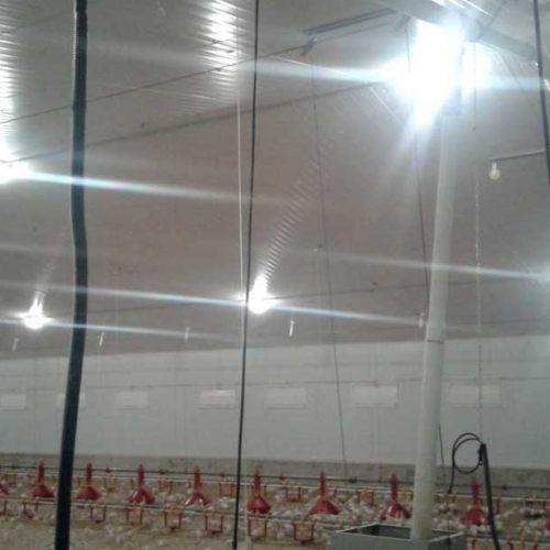 Explotación Avícola Llave en Mano para Engorde de Pavos Canredondo de la Sierra (Soria)